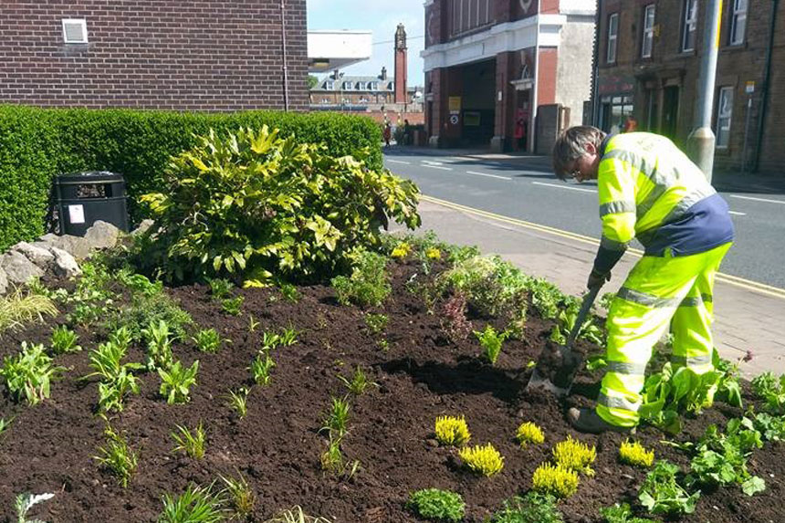 Workington In Bloom Need Volunteers