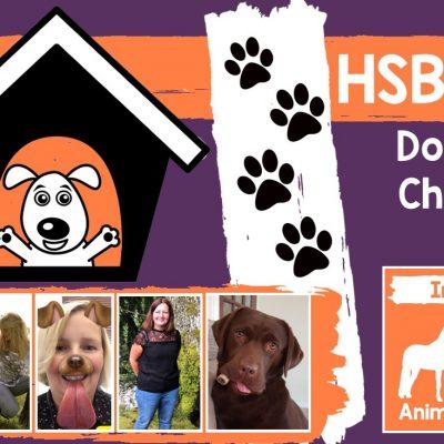 Oak Tree Animals Charity